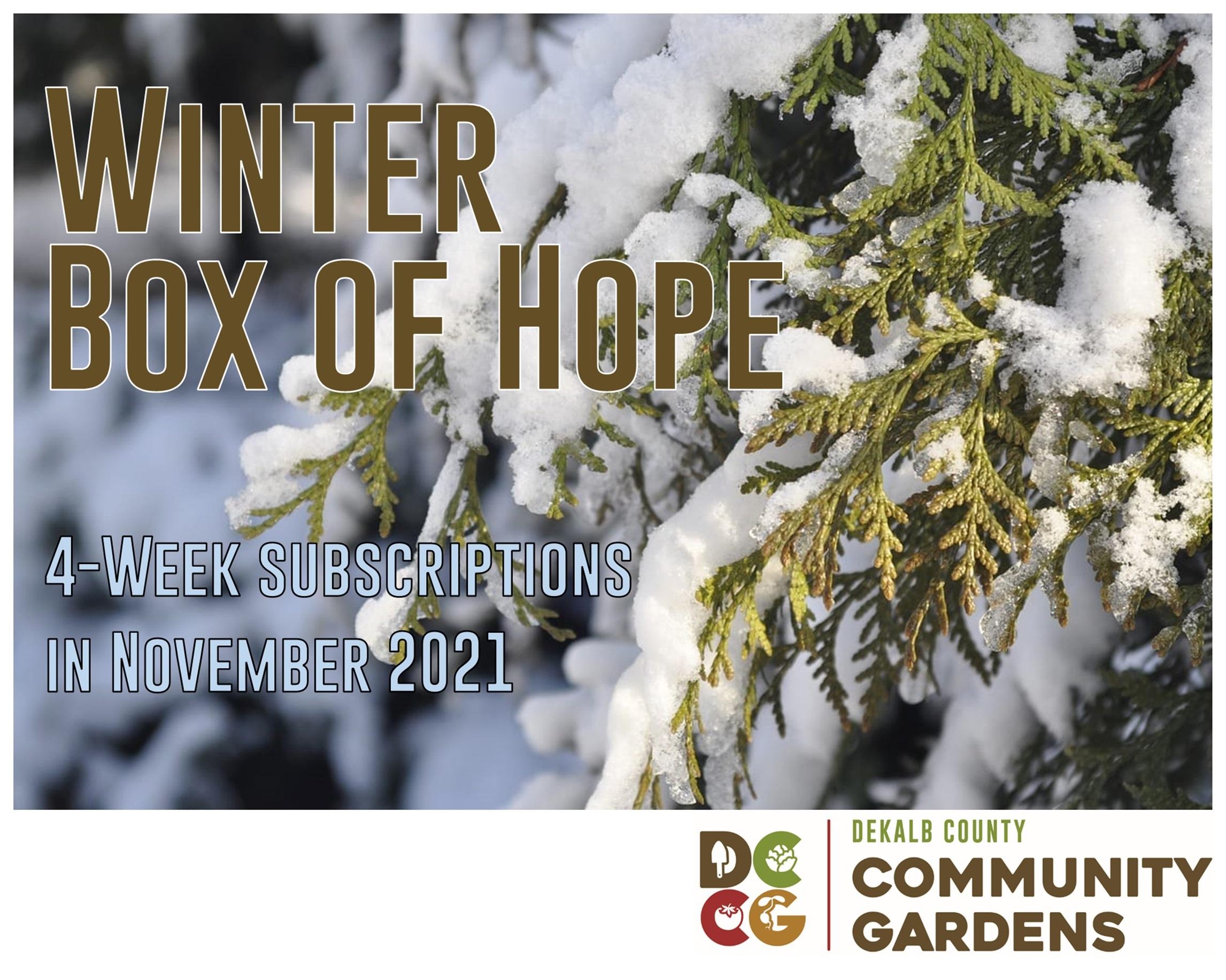Winter Box of Hope